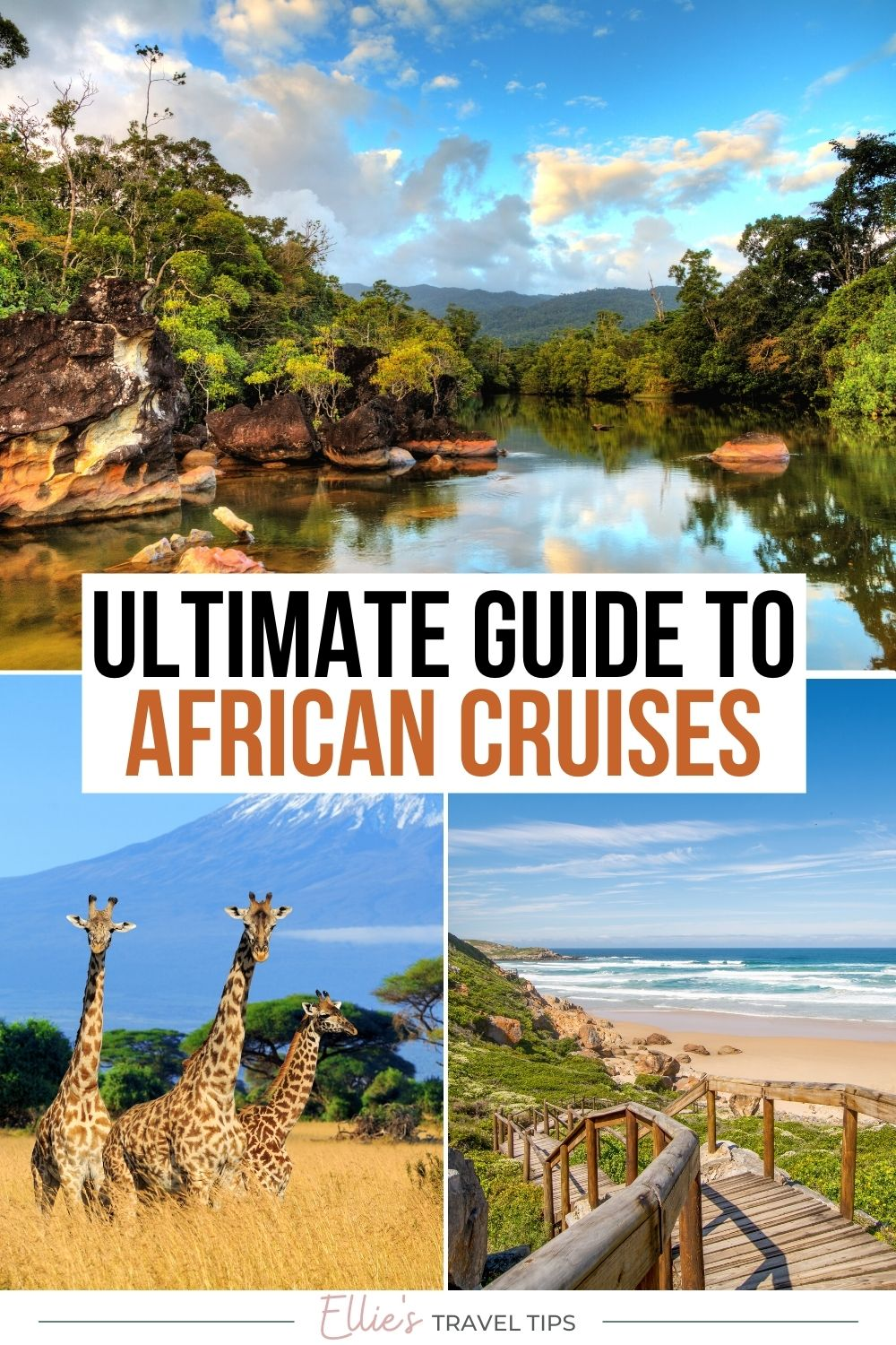 africa cruises pin for pinterest