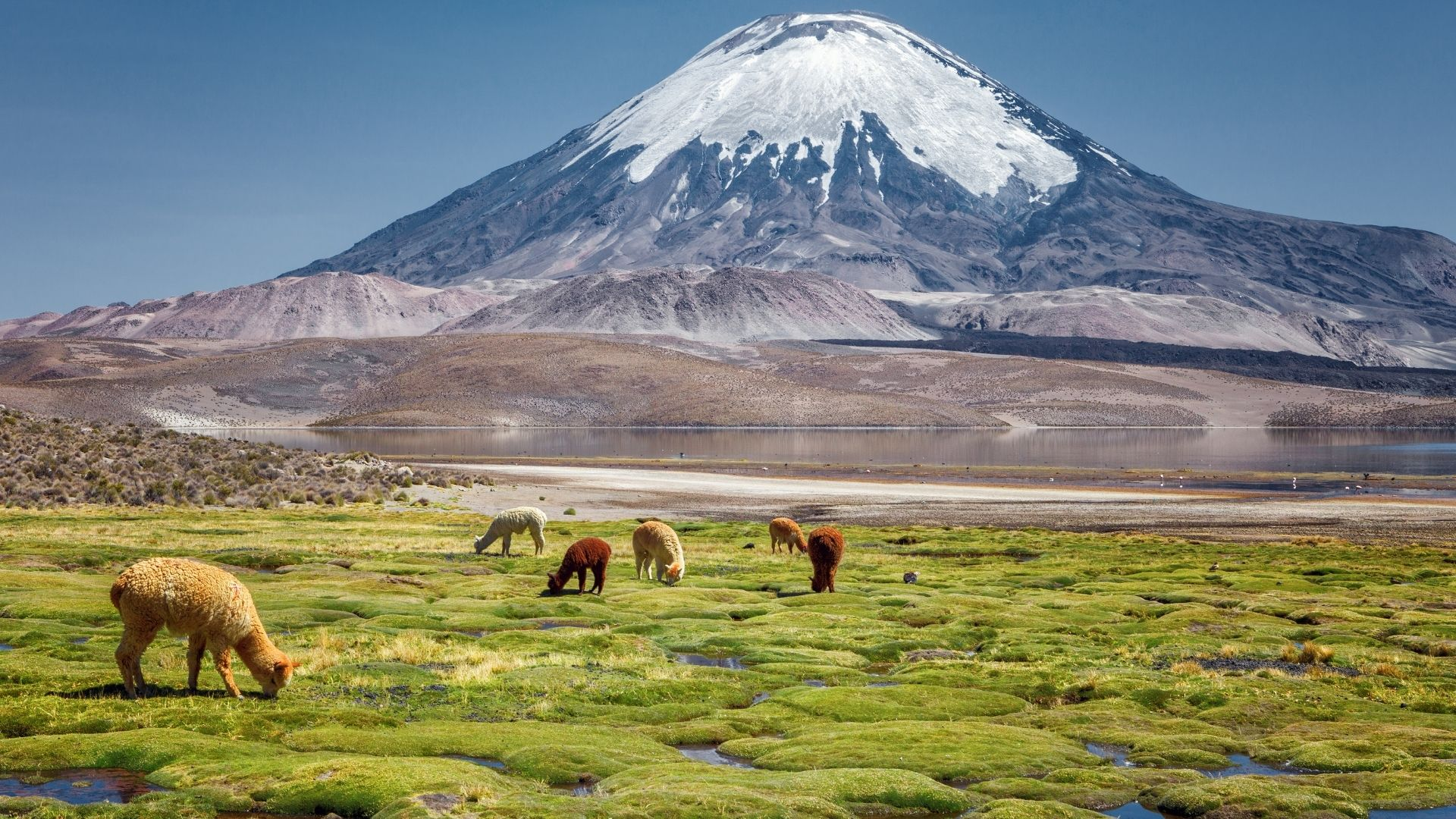 Chile vacation destinations in South America