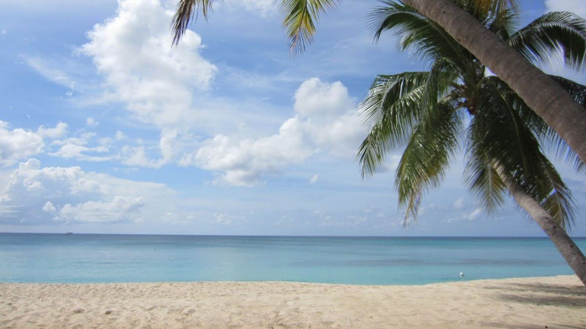 cheap vacation grand cayman