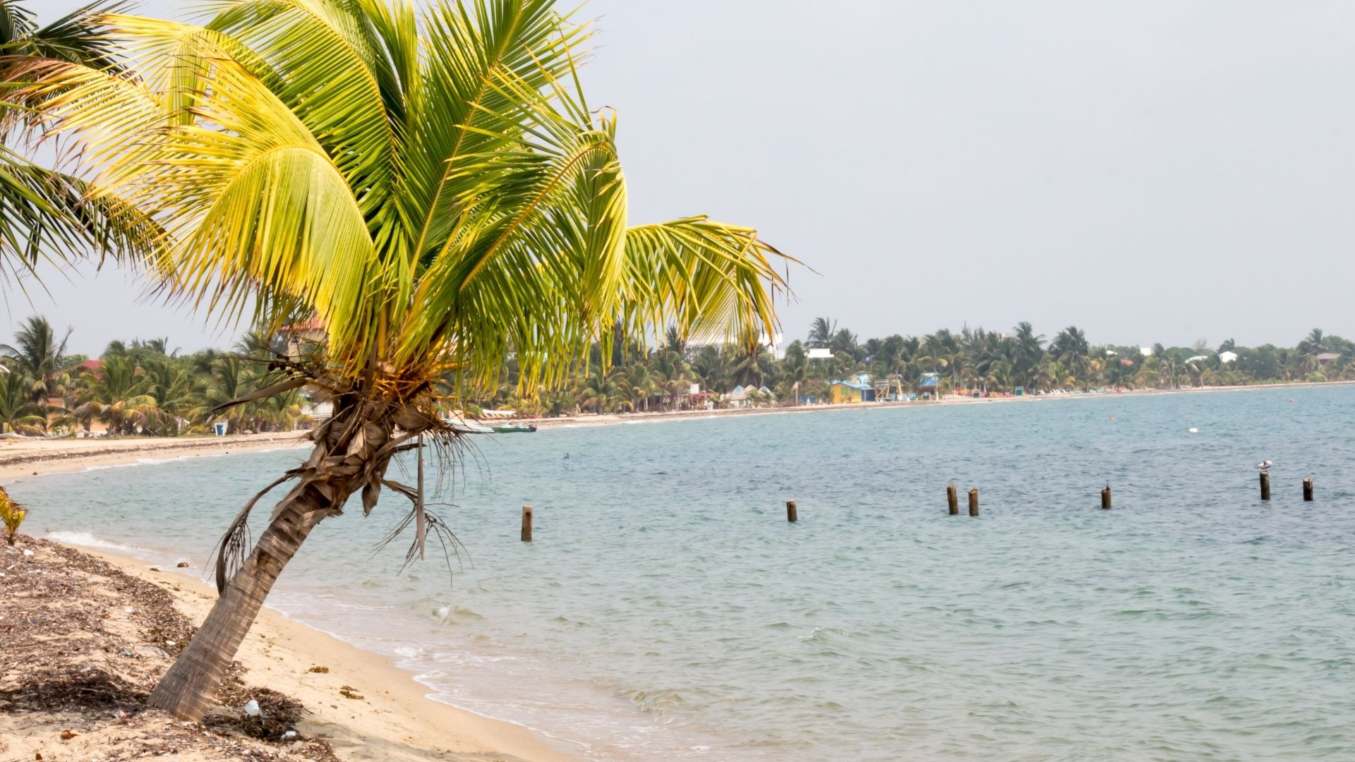 cheapest destinations in the Caribbean Placencia