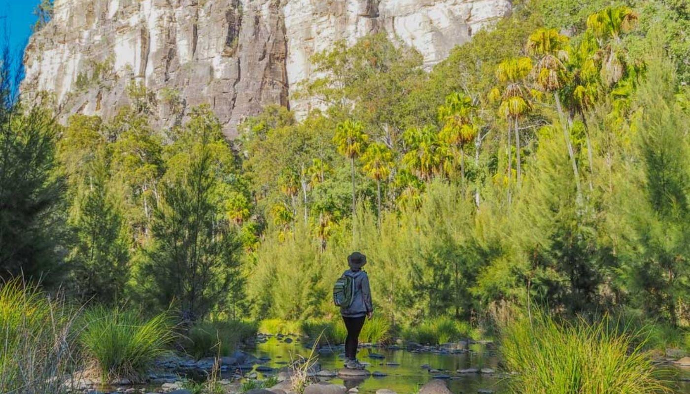 Carnarvon Gorge hike