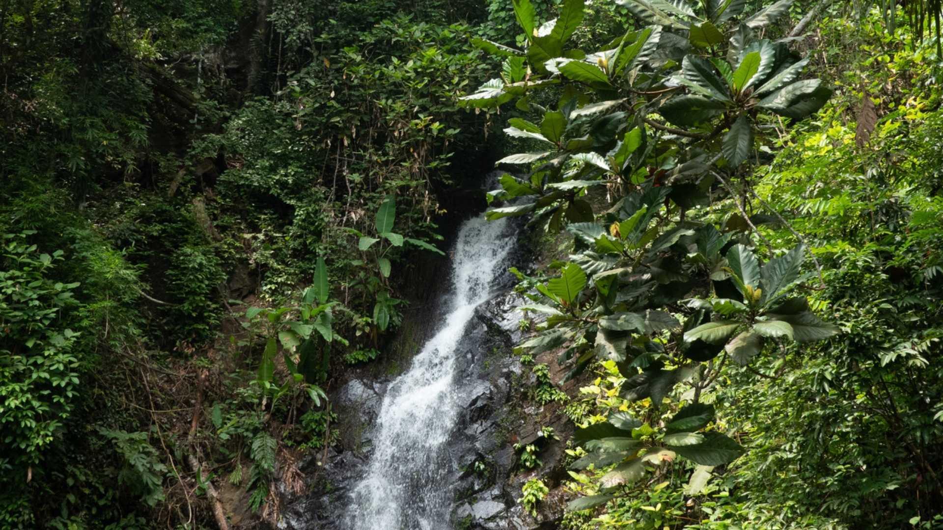 Durian Falls, Malaysia beautiful waterfalls