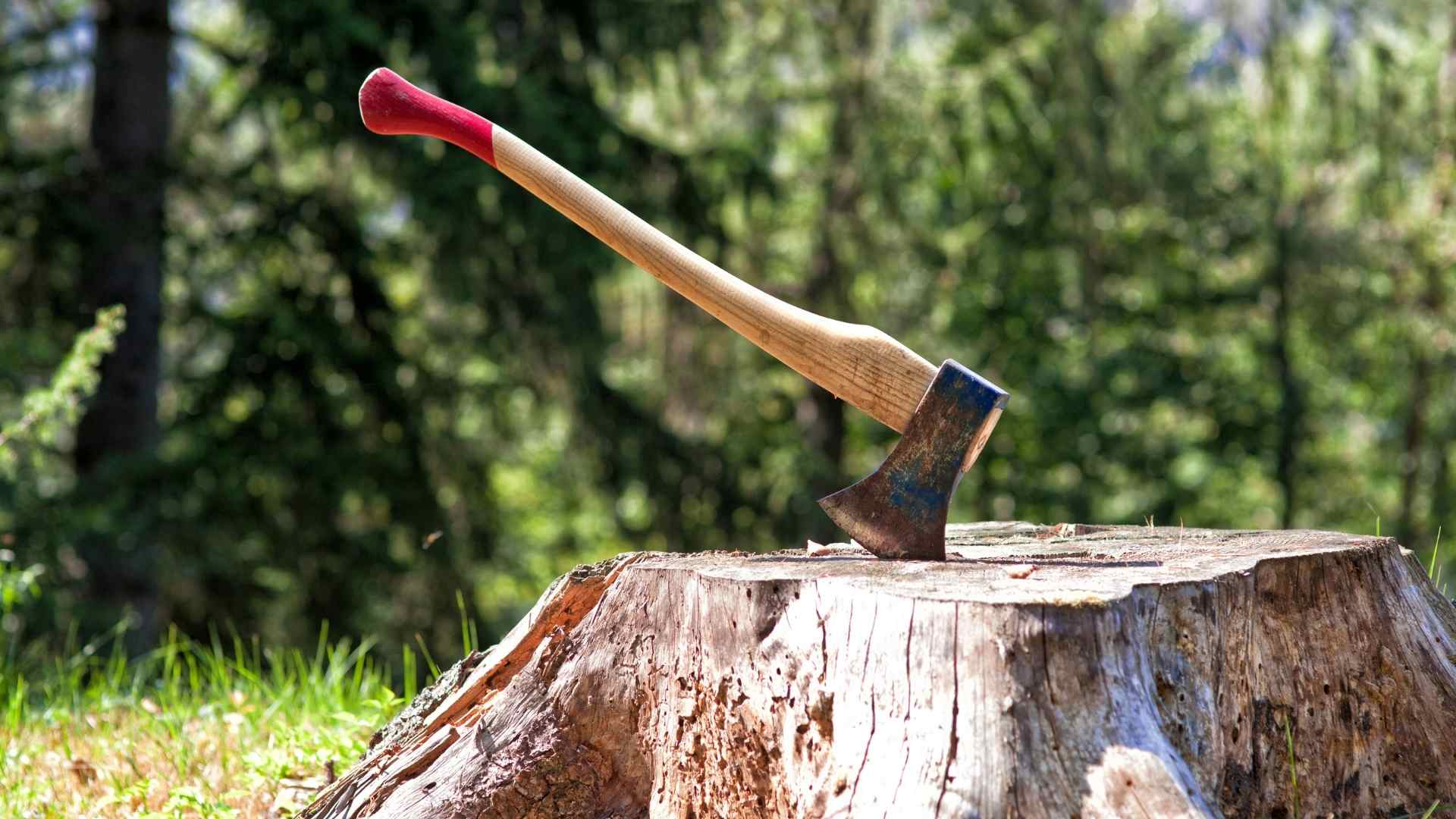 Ketchikan Lumberjack Show