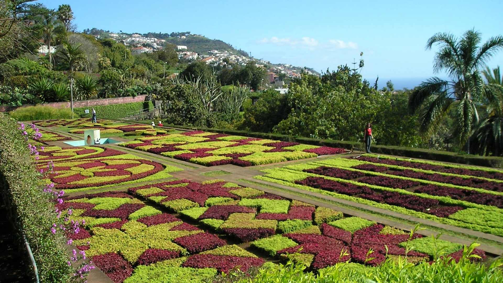 Madeira cruise port