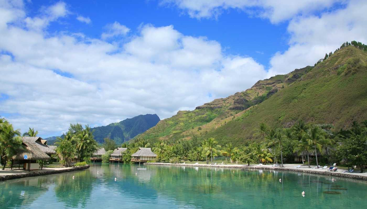 south pacific cruises